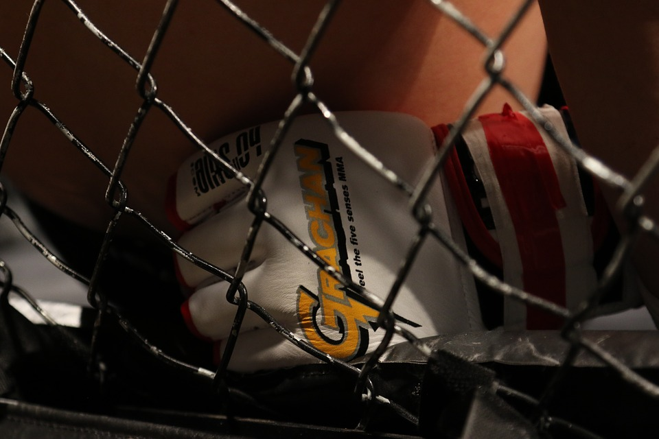 MMA glove close up in the octagon