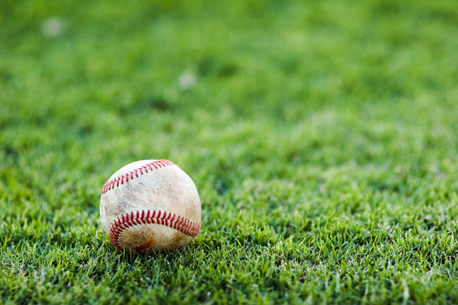 Baseball Ball lying on the grass
